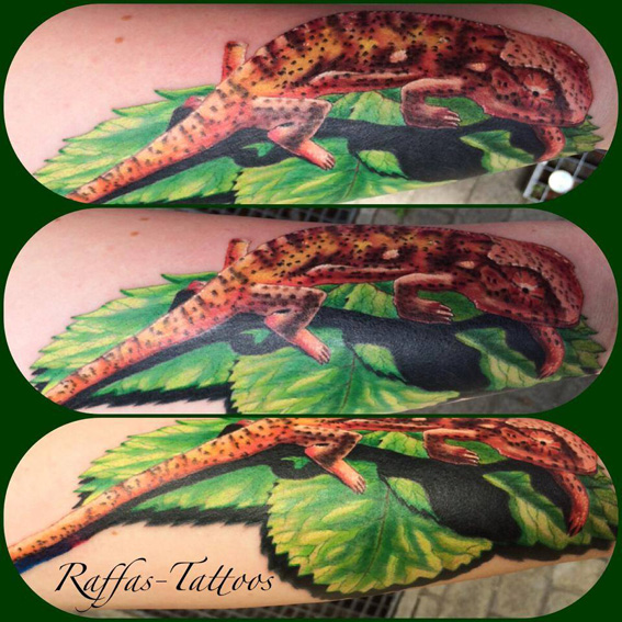 Rattattoo # Tattoostudio # Freiburg